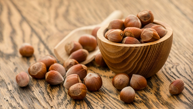 Bowl of hazelnuts