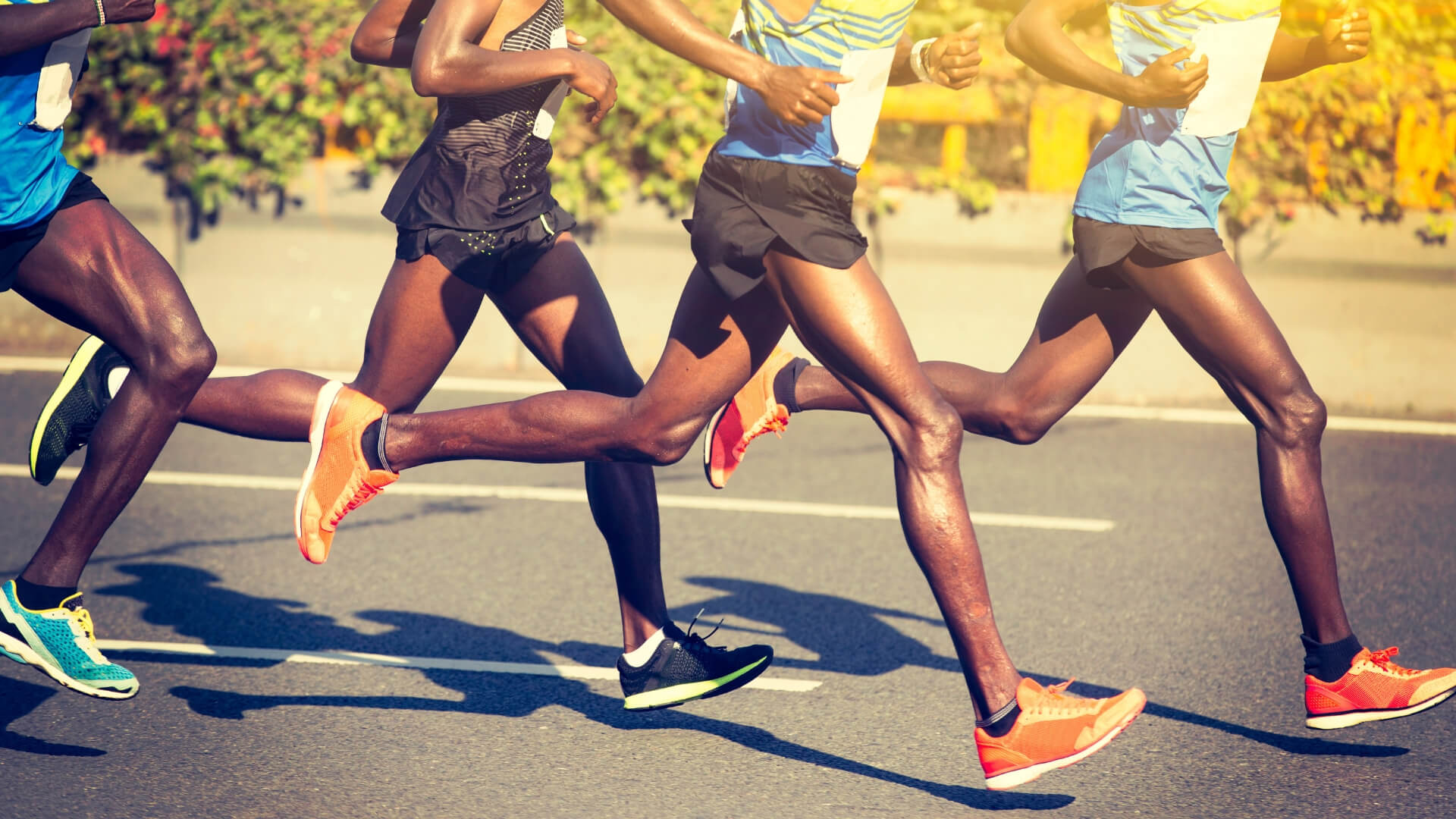 Genetics of marathon runners